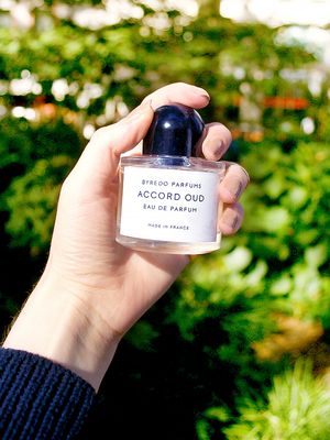 12 Cosy Fragrances That Smell Like Fall