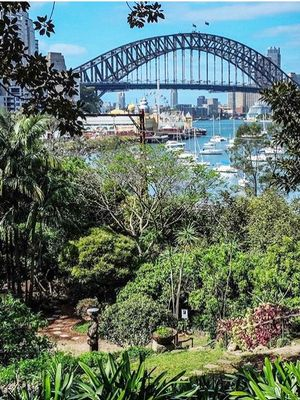Sydney's Most Secret Summer Picnic Spots