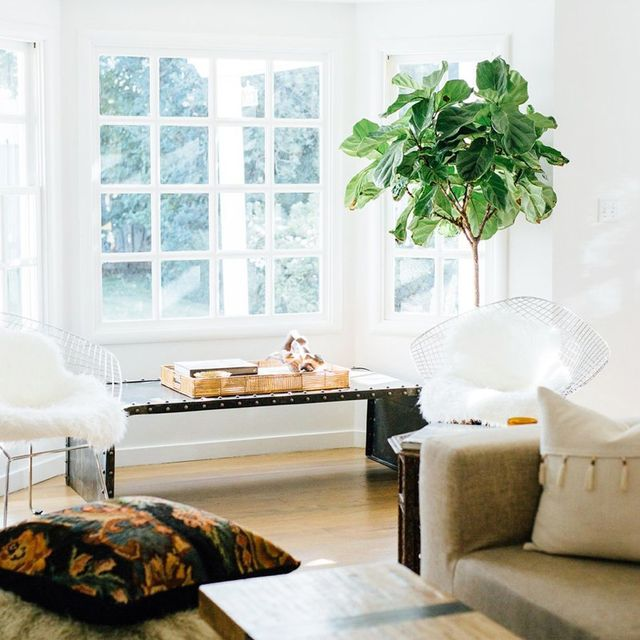 9 Things We Learned From One Blogger's Boho Home