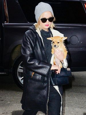 Jennifer Lawrence Walks Her Dog in New York, Looks Chic as Ever