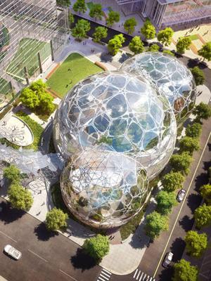 Amazon's Employee Treehouses Take Work Perks to a Whole New Level