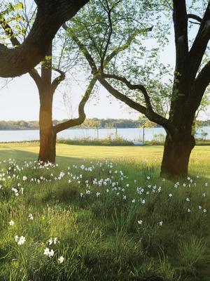 Take a Walk Through Anna Wintour's Enchanting Long Island Garden