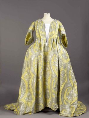 "See the Historic Dress Described as a ""French Revolution"""
