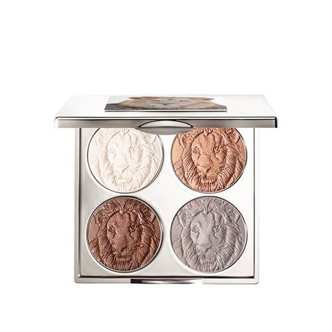 Protect the Lions Eye Palette