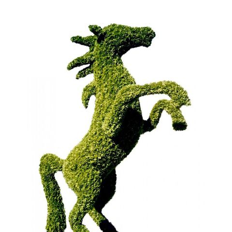 Life-Size Topiary Horse