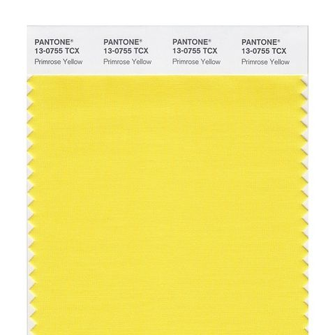 Smart Swatch 13-0755 Primrose Yellow