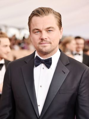 Step Inside Leonardo DiCaprio's $2.4 Million L.A. Home
