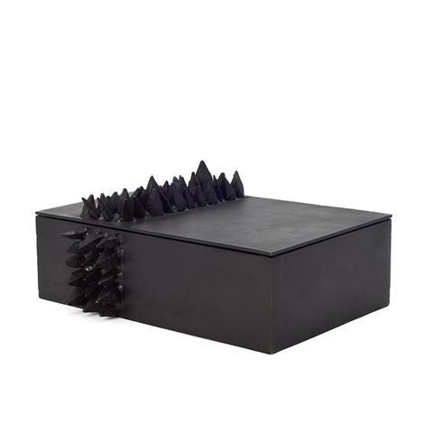 Black Spike Storage Box