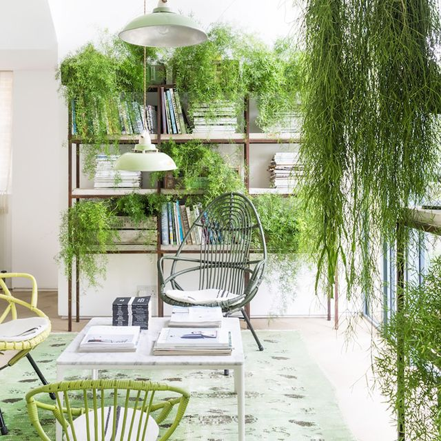 This Inspiring Home Trend Brings the Outdoors In