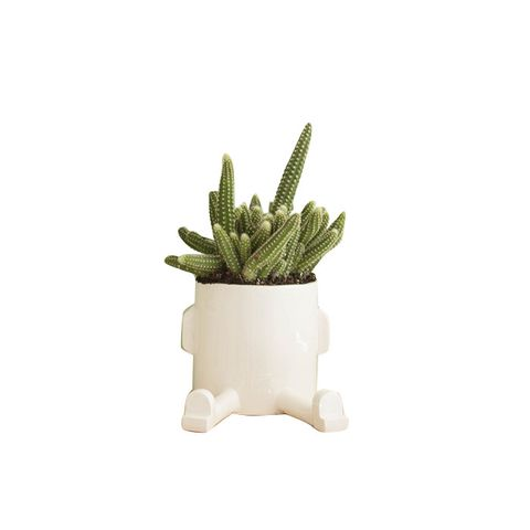 Ceramic Planter Sprawl Pot