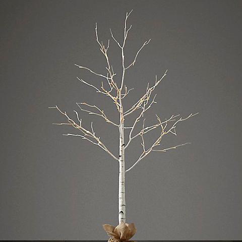 Winter Wonderland Trees Birch