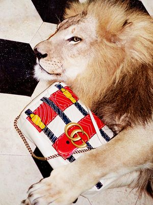 You'll Have So Many Questions About Gucci's New Campaign