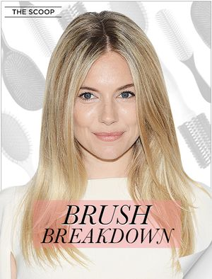Brush Breakdown