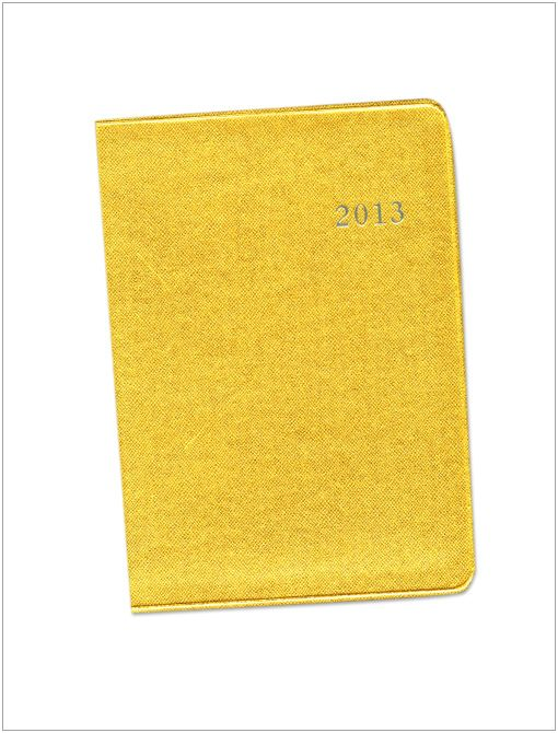 2013 Graphic Image Desk Agenda ($40) in Gold Saffliano