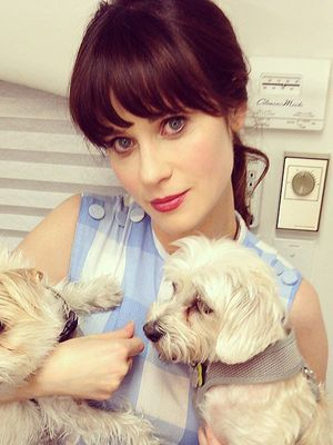 Zooey Deschanel's Secret To Winning At Instagram