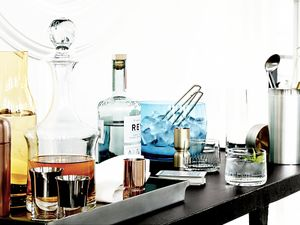10 Totally Chic Ice Buckets