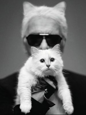 Of Course: Choupette Just Got Her Own Fashion Line