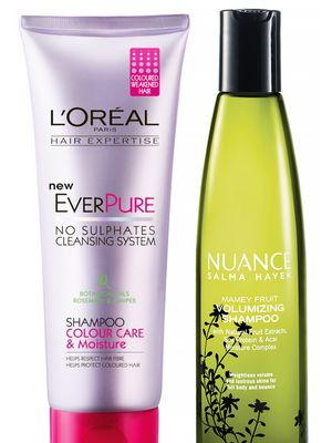 The Best Shampoo for Your Hair Type: Drugstore Edition