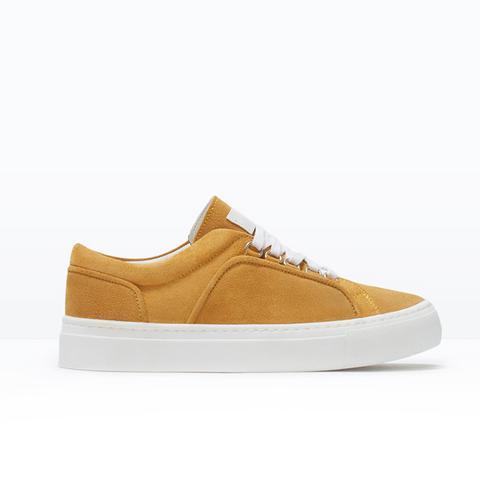 Suede Plimsoll Sneakers