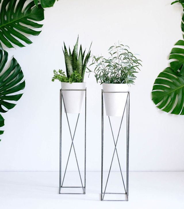 The best plant stands on the market mydomaine au - Indoor plant stands for multiple plants ...