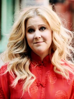 """Find Out What Amy Schumer Thinks Is """"Vile"""""""