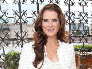 Rent Brooke Shields's Gorgeous Pacific Palisades Home