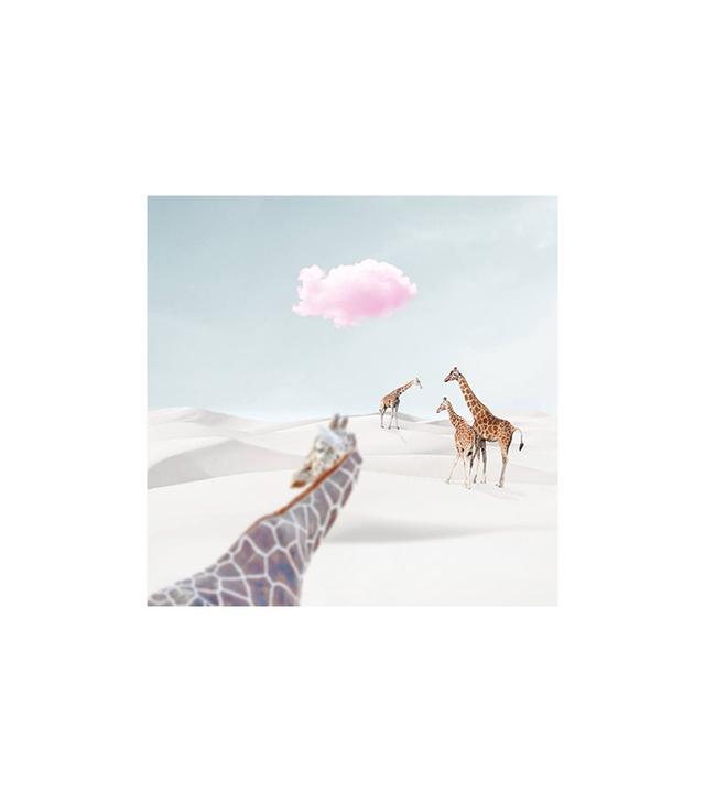 """Voyage // Giraffe""by Agnieszka Maria Zieba ($72 and up)"