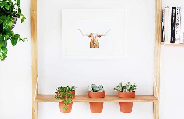 A Planter Shelf