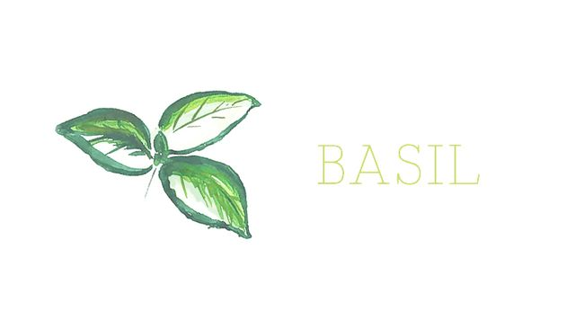 This plant is tricky yet entirely doable. The basil varieties most suited for indoor growth are the Spicy Globe or African Blue. Don't mind the thin leaves of the African Blue variety....