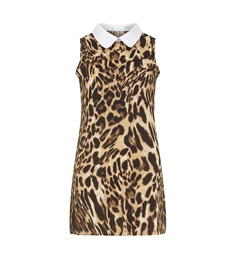 Dorothy Perkins Animal Collared Shift Dress ($35) 