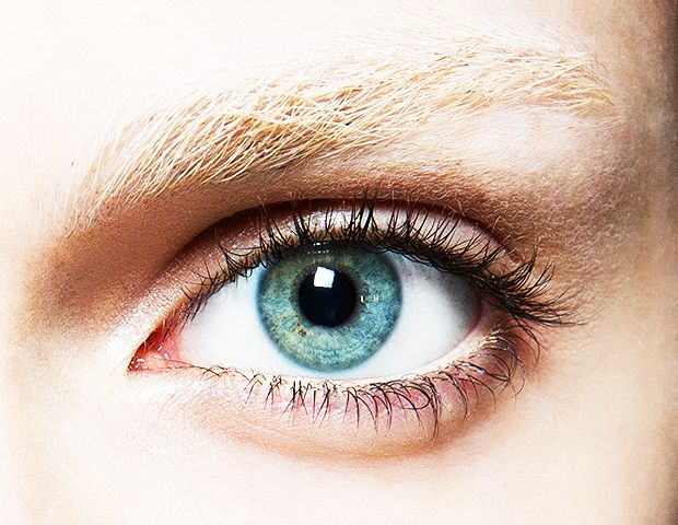 Everything You Need To Know About At-Home Eyelash Tinting