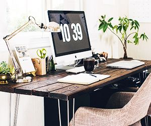 The Best Low Light Plants for Your Desk