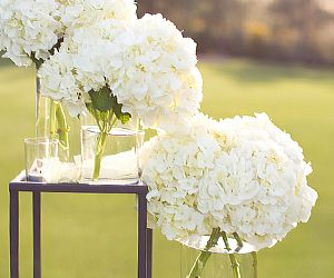 5 Affordable Florals For a Wedding
